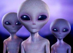95920277_large_3623822_alien